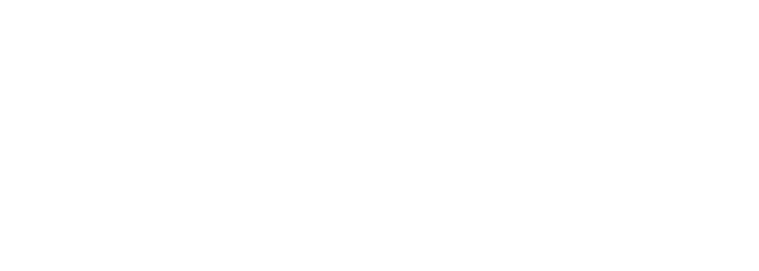 Logo M.T.V.M.